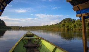 javary river amazon experience