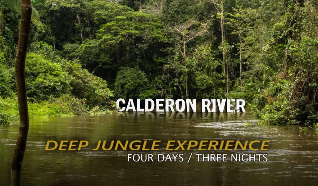 calderon river tour four days