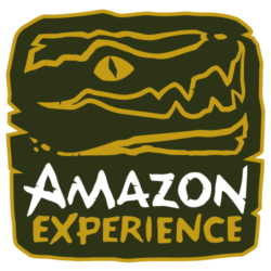 Amazon Experience jungle tours