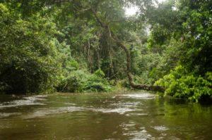 calderon river tour gallery