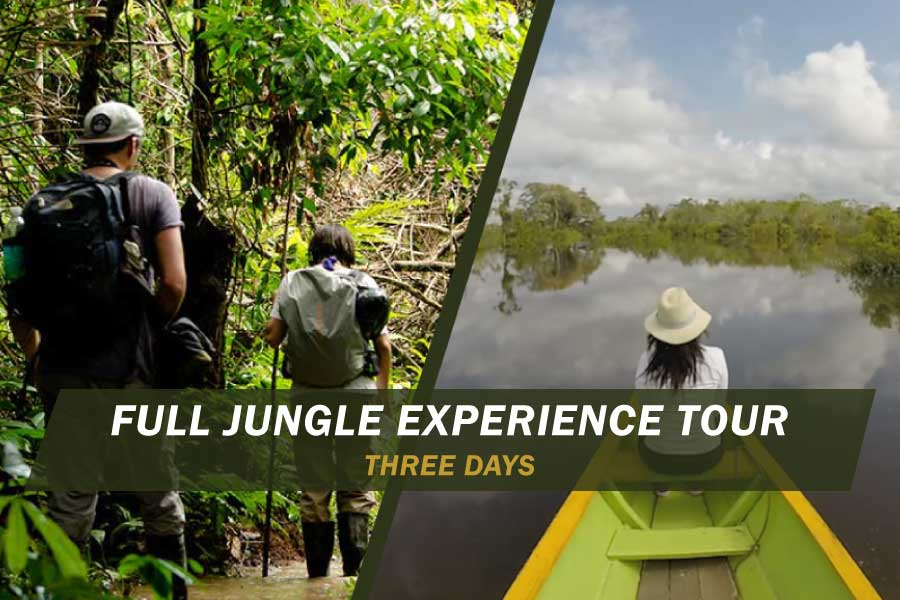 full-jungle-experience three days