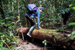 amazon jungle trek