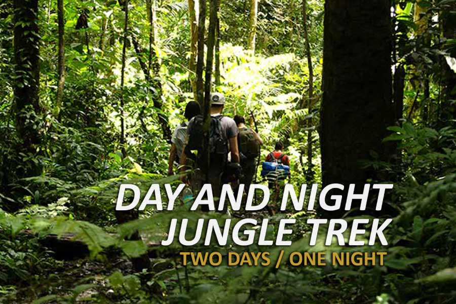 day and night jungle trek tour